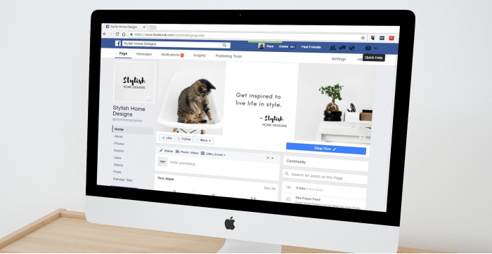 Gestion de réseaux sociaux pour les entreprises et création de contenu pour les médias sociaux, tout en augmentant la visibilité en ligne.